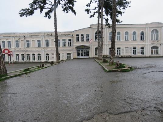 Telavi town
