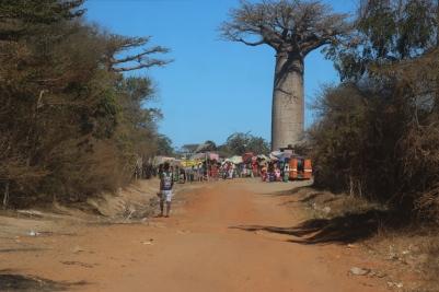 Kirindy village