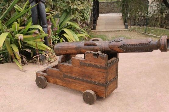 Crocodile canon